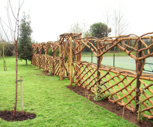 No.12 Decorative Trellis Fencning