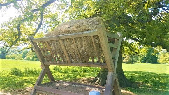 Deer Hay Manger