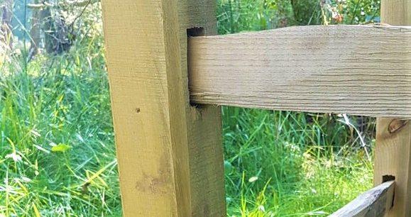 Tree Guard Detail